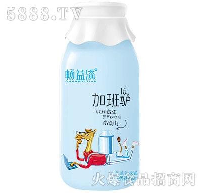 畅益添加班驴乳酸菌饮品350ml