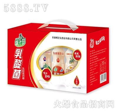 椰汁岛乳酸菌饮品340mlx10瓶