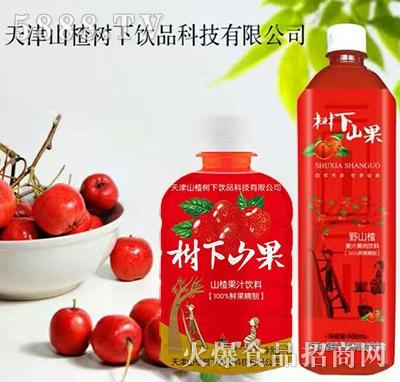 树下山果野山楂果汁果肉饮料(瓶)