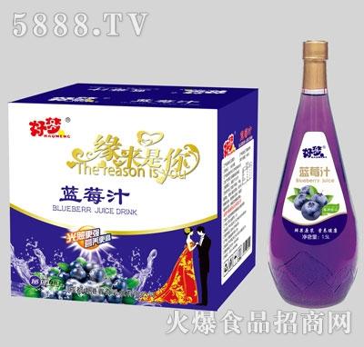 好梦缘来是你蓝莓汁1.5Lx6瓶