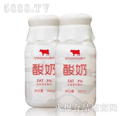 乳酸菌发酵酸奶380ml
