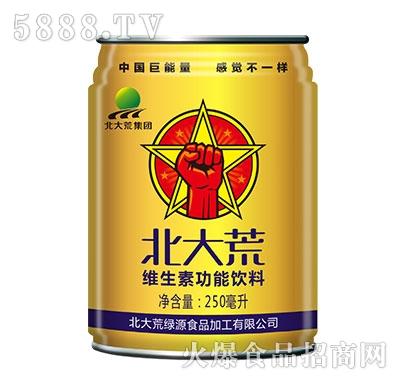 250ml北大荒集团维生素饮料