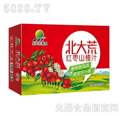 310mlx20罐北大荒集团红枣山楂汁