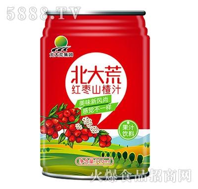 310ml北大荒集团红枣山楂汁
