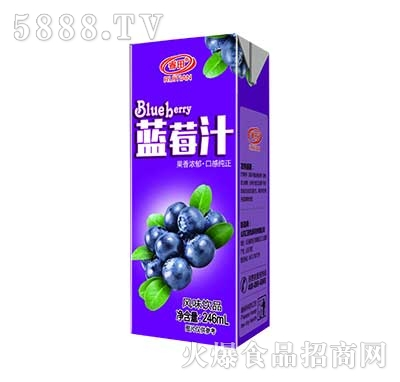 睿田蓝莓汁风味饮品246ml