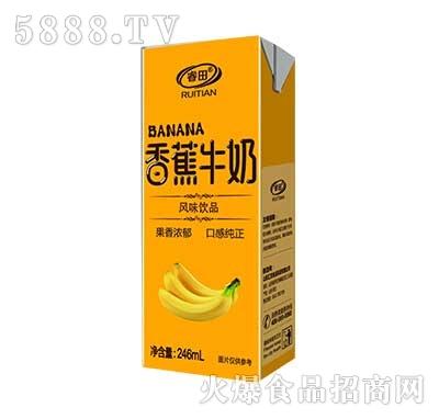 睿田香蕉牛奶风味饮品246ml