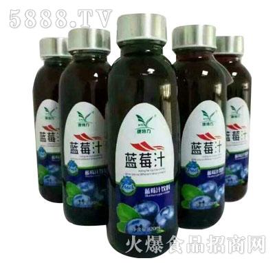 康特力蓝莓汁饮料1.5L(瓶)