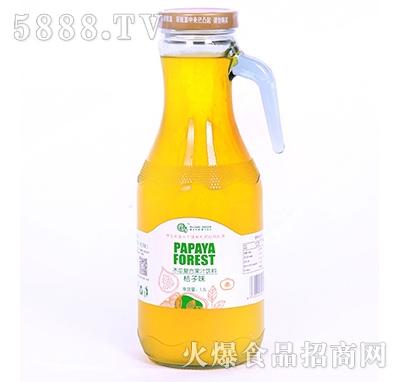 武当龙木瓜复合果汁饮料桔子味1.5L