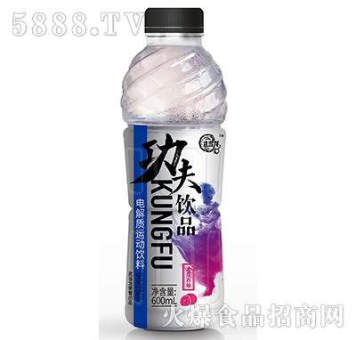 武当龙功夫饮品电解质运动饮料木瓜西柚600ml