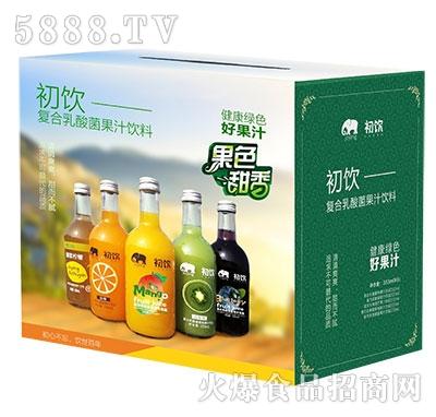 初饮复合乳酸菌果汁