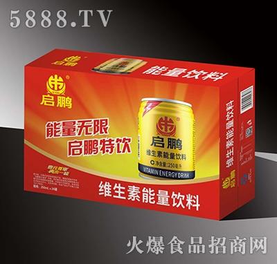 启鹏维生素能量饮料250mlx24罐
