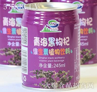 大漠神杞黑枸杞维生素植物饮料245ml