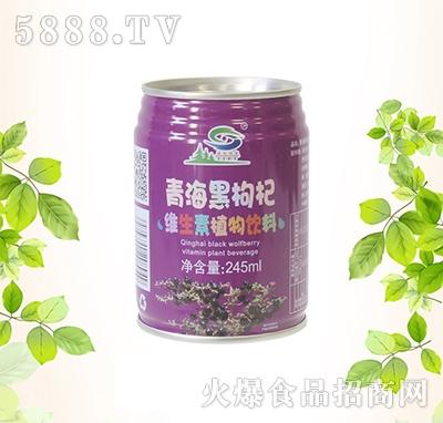 大漠神杞青海黑枸杞维生素植物饮料245ml