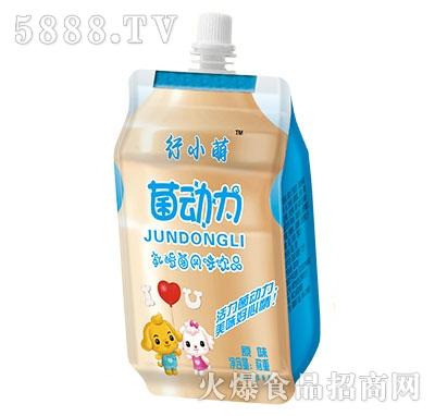行小萌菌动力乳酸菌原味风味饮品称重