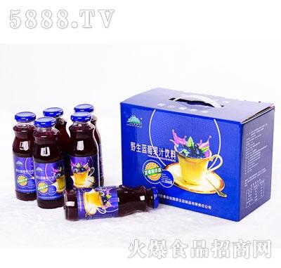 兴安猎神野生蓝莓果汁饮料320mlX8