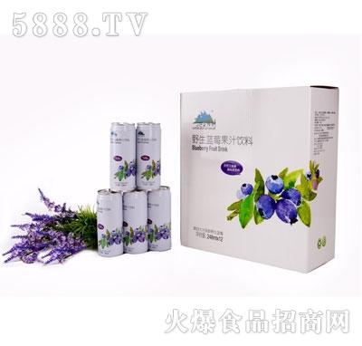 兴安精神野生蓝莓果汁饮料248mlX12