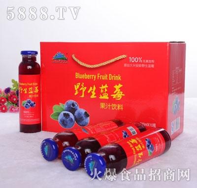 兴安猎神野生蓝莓果汁饮料