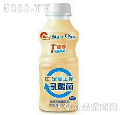 注养发酵乳酸菌饮品450ml产品图