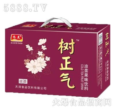 悠美树正气凉茶果味饮料箱装