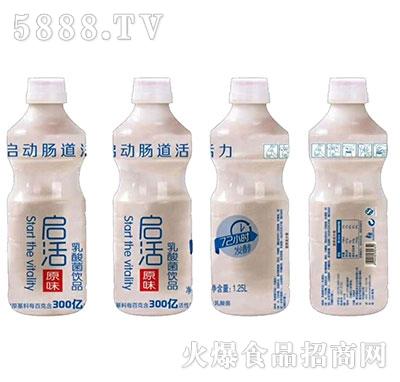 启活乳酸菌原味1.25L