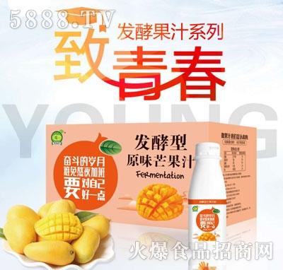 汇恋发酵型原味芒果汁