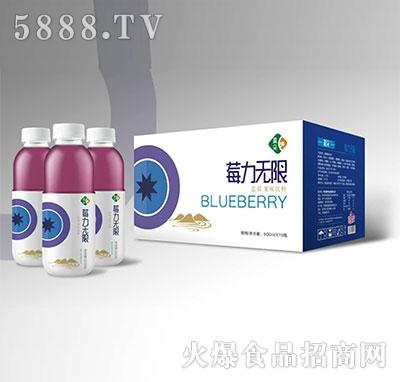 晨朵莓力无限蓝莓果味饮料500mlx15瓶