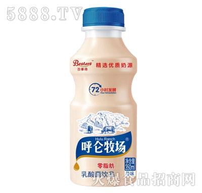 呼仑牧场乳酸菌饮品350ml
