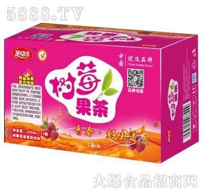 量动宝树莓果茶果味饮料500mlx15瓶