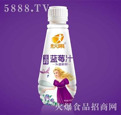 秋果生榨蓝莓汁450ml
