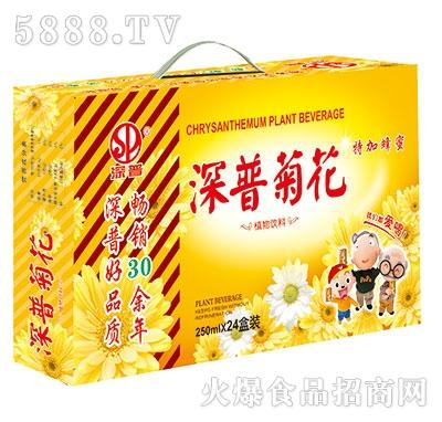 深普菊花茶+蜂蜜植物饮料250mlx24盒
