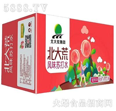 520mlx15瓶北大荒集团风味苏打水蜜桃味