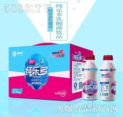 纯乐美乳酸菌饮品340mlx10瓶
