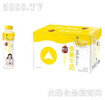 尊仕香蕉牛奶500mlx15瓶产品图