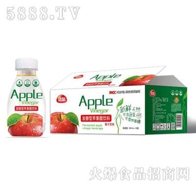 团友发酵型苹果醋饮料