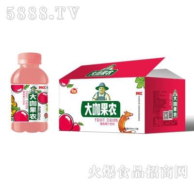 团友大咖果农蜜桃果汁饮料450mlX15