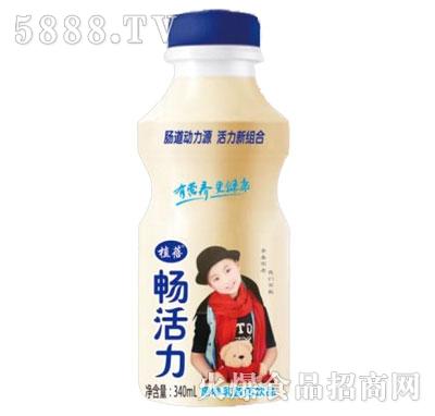 植蓓畅活力原味乳酸菌饮品