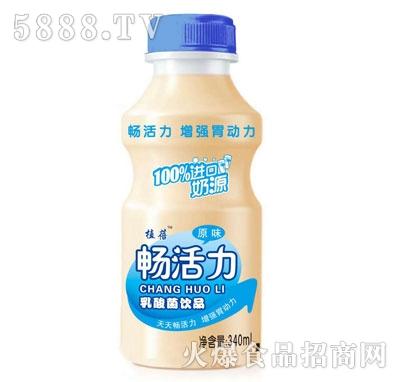 植蓓畅活力乳酸菌饮品原味340ml