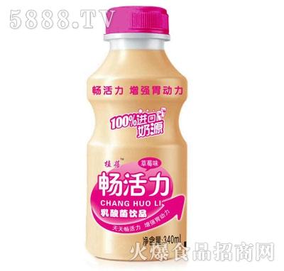 植蓓畅活力乳酸菌饮品草莓味340ml