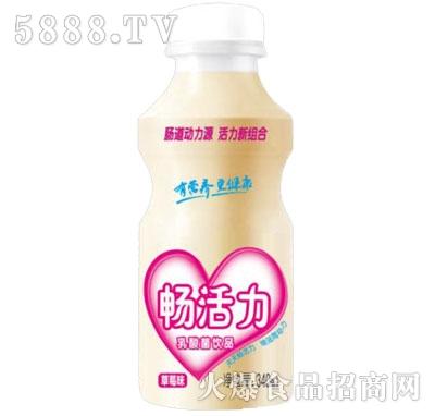 植蓓畅活力乳酸菌饮品草莓味