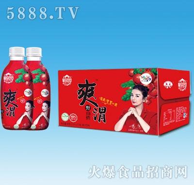 鹤园爽渭野山楂汁350mlx15瓶