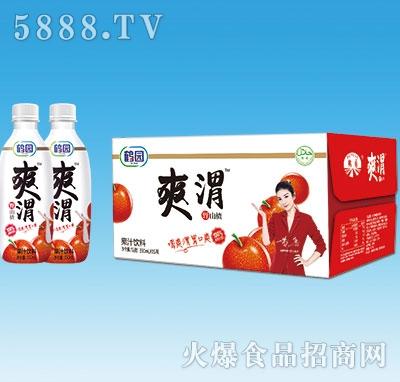 鹤园爽渭野山楂汁饮料350mlx15瓶