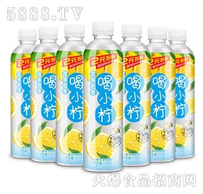 踏浪喝小柠柠檬味果味饮料500ml