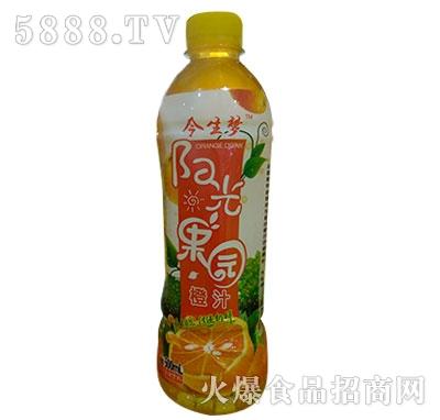 今生梦眼光果园橙汁饮料500ml
