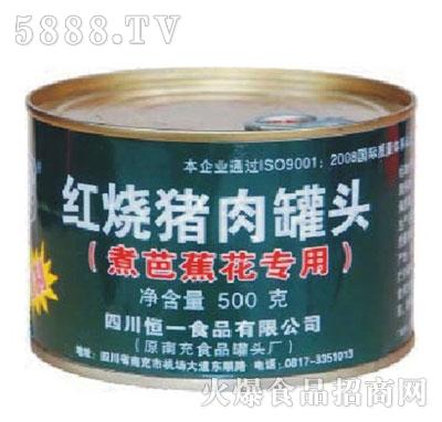 嵋林牌500克红烧猪肉产品图