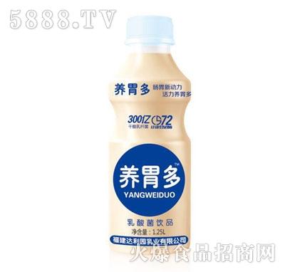 养胃多乳酸菌饮料1.25L