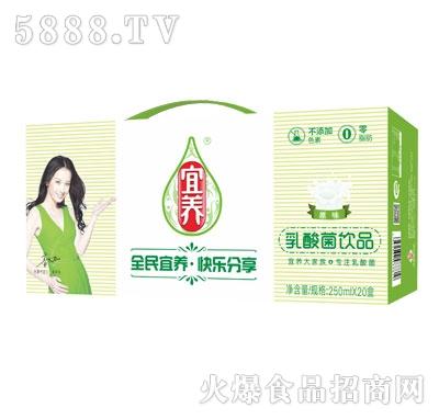 宜养原味乳酸菌砖包普装250mlx20盒