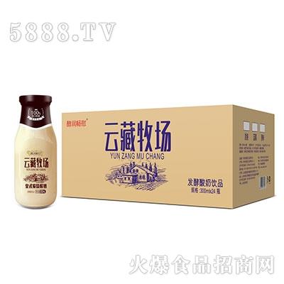 酵润畅慰云藏牧场皇氏炭烧酸奶300mlx24瓶