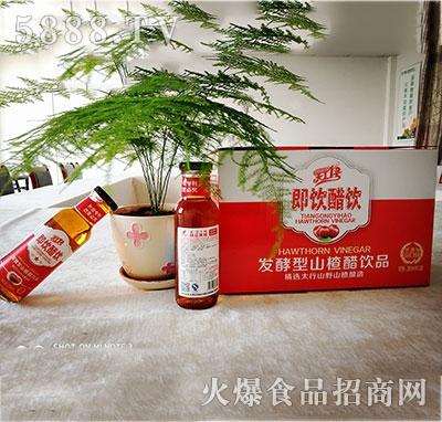 天工一号发酵型山楂醋饮料280mlx12瓶