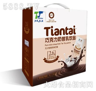 天太乳业巧克力奶昔乳饮品250mlX12产品图