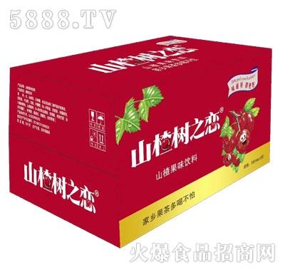 山楂树之恋山楂果味饮料350mlX15